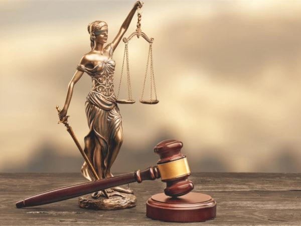 Avvocati qualificati